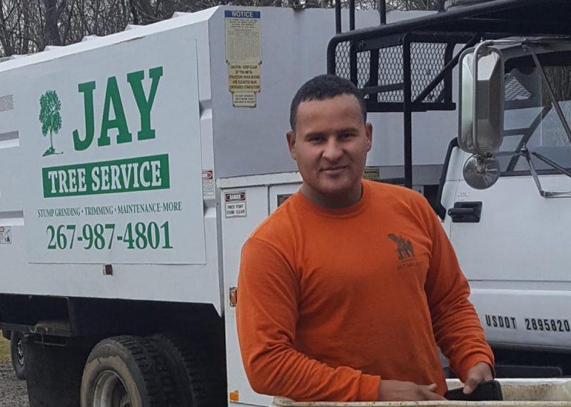 Jay Tree Service Tree Removal Company in Bucks County PA